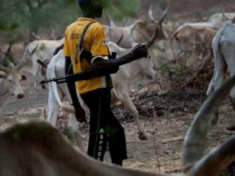 20180529-Fulani-herders-@-stock-image