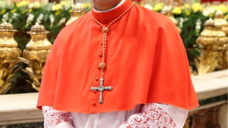 ACN-20180718-74044-Cardinal-Leopoldo-Jose-Brenes-Solorzano
